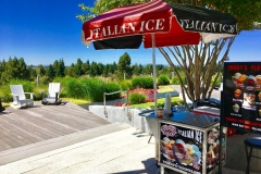 Italian Ice Cream Cart Catering